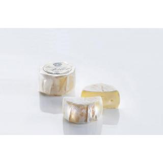 Bio-Taler 55%F  Mini-Camembert